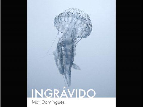 Ingrávido/Mar Domínguez