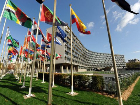 UNESCO: Condición del Artista